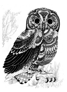 Owls are thought to be bad luck by many Italians.